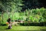 wpid-gardenupdate.jpg
